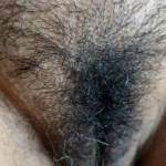Hairy pussy for you to fuck !!