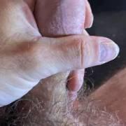 My zoig Dick