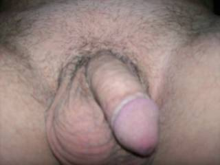 shaved dick and balls stubble growing now