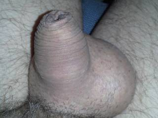 small shaved dick