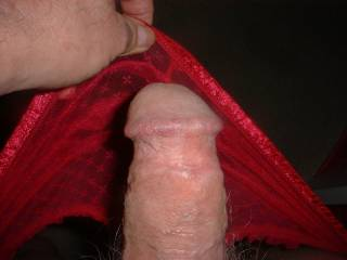 I needed to cum so I pulled my knickers down and enjoyed a quick wank