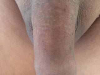 Nice smooth shaved soft uncut dick .