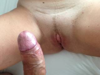 My thick hard cock ready to fuck her wet warm pussy