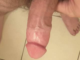 Erect and waiting to cum.