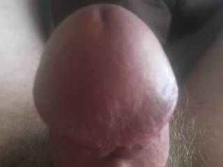 Another boner pic for those who like my dick
