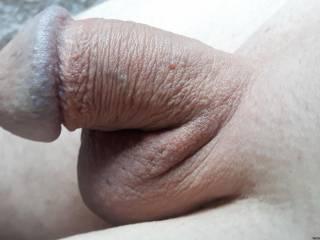 Freshly shaved cock...