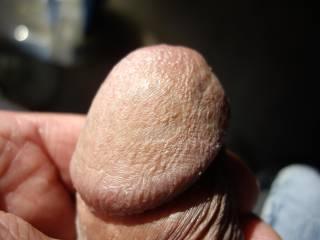 dirty dick head