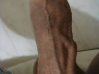 best veiny dick ever. i would like to find out how that vein would feel on my lips as i deep throat you that protrudes out. huge vein!! so sexy them veins sll over that big dick