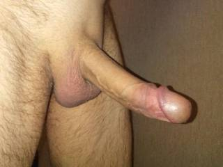 Cock hard at work from looking at the sexy people on zoig, anyone care to help me out with this hard cock?