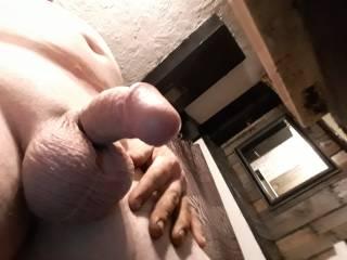 Getting horny