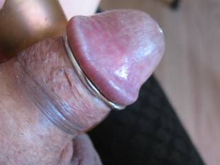 The little guy loves to wear this piece of hardware because the ring keeps everything so nicely in place.  He loves this
