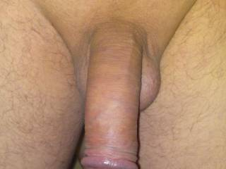 Nice cock even when its not hard :)