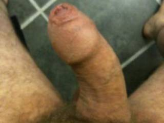 A picture of my dick getting ready for a bit of fun