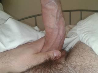 nice veiny cock to ride