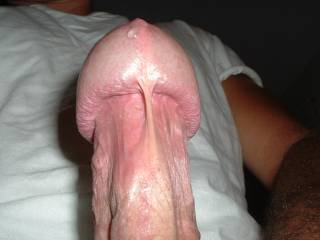 closeup shot of my head oozing out some precum
