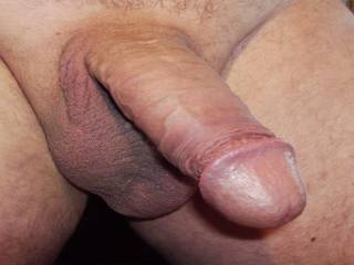 My Big Dick ready to Fuck Pussys and Assholes