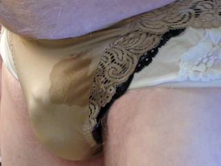 New brown Natori panty from fellow panty lover that I had fun in.
