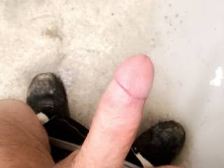 I love sucking on this cock! Is there any ladies that could assist?