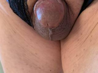 Closer view of my small Asian cock poking through my crotchless panties