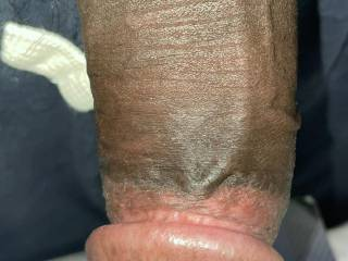 Looking for a sexy female to milk me on a reg