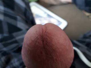 Love stimulating my cock head, look good enough to lick?