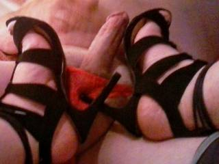 """Notice how Honey """"poked"""" a little fun while showing off her new heels?  Would you let her model her next new shoes for you?"""