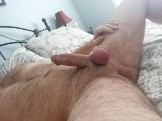 My hard cock and bound balls. Can you tell how horny I am?