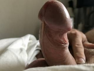 Morning Rise, Rock Hard after dreaming many fantasies! A morning stroking and pulling my cock viewing all my sexy friends profile pics n vids on Zoig! Thought it only fare to share some pictures from various views and states of play! Enjoy them �