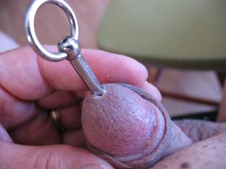 It doesn't take much effort at all to get my little guy to swallow this hardware.  I think that I see some precum too