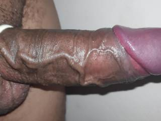 Growing cock inside ring