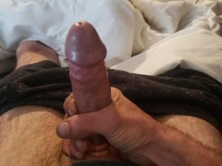 My beautiful big vermont cock.
