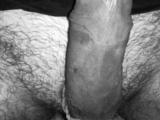 She bound me up real tight and had me take pics while she hardly touched it. Once I started oozing pre, she stuck her dick in my mouth and had me suck her dry