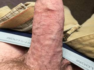 Love all the veins that run through my cock in this photo