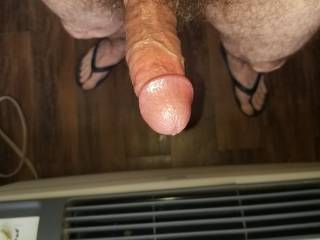 Standing In My Hotel Room Window, Showing Off My Big Hard Hairy Cock To Passerby.
