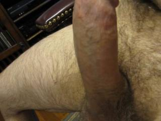 My thick erect cock!