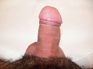 I love that kind of cock!!  Love big head