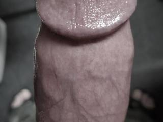 Ladies, do you like the shape and curves of my cock head, the ridge? It is the crown of my king stallion cock, the bulging, pulsating knob that you will feel stroking your insides and probing your deepest depths. The head that will gush and gush for you.