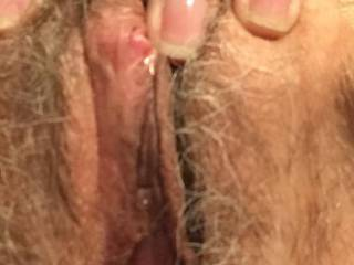 Shelley's pussy with erect clit
