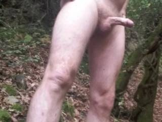 Out for a naked walk in woods, feels great with cool air on my hard cock!