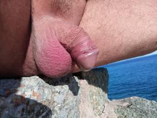 dick in the sun