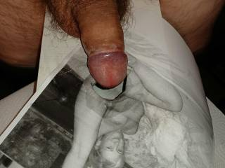 Ass and pussy from Sylvie001 fucked on pc