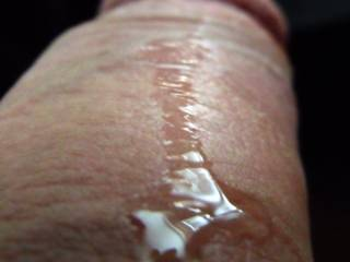 Precum dripping down the shaft of my cock