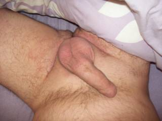 my shaven cock