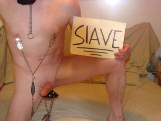 slave for use by all!!!! have toys am shaved and nasty and obedeint am inexperienced, but want more!!!! have toys and still and videl ca,eras and want to perform for YOU!!