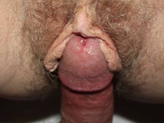 Would you like to have my pussy lips wrapped around your cock?