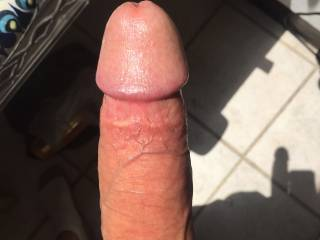 just my hard cock in the sunlight.. share your thoughts with a comment :)