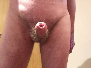 Would you like to massage my balls and lick and stroke my erection?