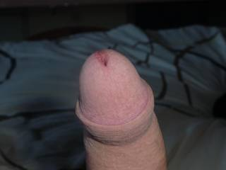 mmm would be nice to wank lick and suck you till you are hard and throbbing then......... well what then? :)
