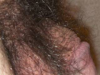 Side view of my hairy cock for hairy cock lovers