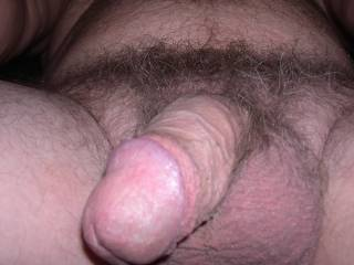my small hairy dick and balls at rest as i sign on to zoig